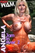 Jam in river 2