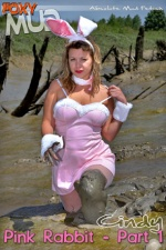 Pink rabbit 1